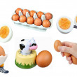 Eggs-Isolated - Stock Photo