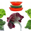 Salad-Vegetables — Stock Photo
