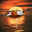Sweet honey - Stock Photo