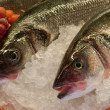 Fresh fishes on ice — Stock Photo