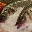 Fresh fishes on ice — Foto de Stock