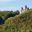 Drachenfels castle in the sun - Foto Stock