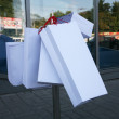 Stock Photo: Shopping bags: variant