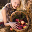 Beautiful blonde smiling woman with many apple in basket on hays — Foto de Stock