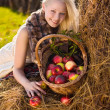 Beautiful blonde smiling woman with many apple in basket on hays — Stock fotografie