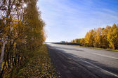 Autumn empty road and blue sky — Stock Photo