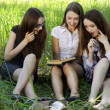 Three students reading books in park - Stock Photo