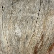 Background Texture Of Driftwood — Stock Photo