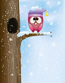 Cute owl on a branch in winter — Stock Vector