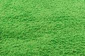 Soccer_field — Stockfoto