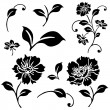 Vector Daisy and Ivy Icon Set — Stock Vector