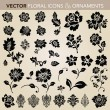 Vector Floral Ornament Set — Cтоковый вектор