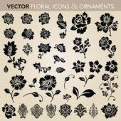 Vector Floral Ornament Set — Stock Vector