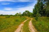 Strada rurale nella steppa — Foto Stock