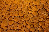 ひび割れた大地 — ストック写真