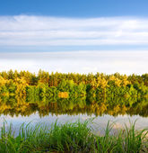 Nice water reflection with autumn forest — Stock Photo