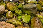 Piedras en la costa del mar — Foto de Stock