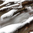 Stream in winter time — Stock Photo #4499226