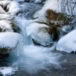 Foto Stock: Winter stream