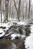 River in winter forest — Stock Photo