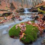 秋の時間山川 — ストック写真