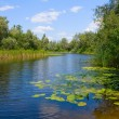 Summer landscape on river - Stock Photo