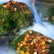 Stones in autumn stream — Stock Photo