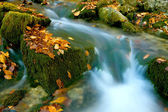 Stream among green stones with autumn leafage — Stock Photo