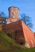 Old castle Wawel — Stock Photo