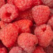Raspberry close up — Stock Photo
