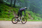 Mountain bike race in a forest — Stock Photo