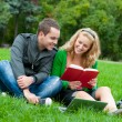 Two students reding the book on the grass — Foto Stock