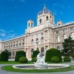 Natural History Museum, Vienna — Stock Photo