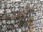 Zabytkowe mury — Zdjęcie stockowe
