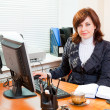 Business woman works — Stock Photo #5242186