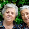 Portrait of two smiling old ladies — Stock Photo