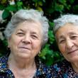 Stock Photo: Portrait of two smiling old ladies