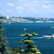 Bosphorus strait, Istanbul, Turkey — Stock Photo #4943180