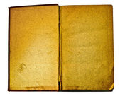 Blank and antique open book — Foto Stock