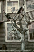 Halloween: creepy house — Stock Photo