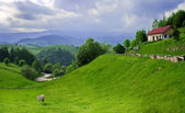 Amazing view in a romanian village — Stock Photo
