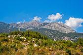 Divoké hory — Stock fotografie