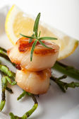 Closeup of two grilled scallops — Stock Photo