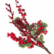 Christmas Decoration — Stock Photo #4058302