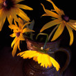 Yellow flowers Rudbeckia — Photo