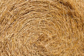 Wheat Haystacks closeup — Stock Photo