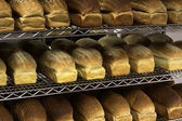 Rows of Freshly Baked Bread — Stock Photo