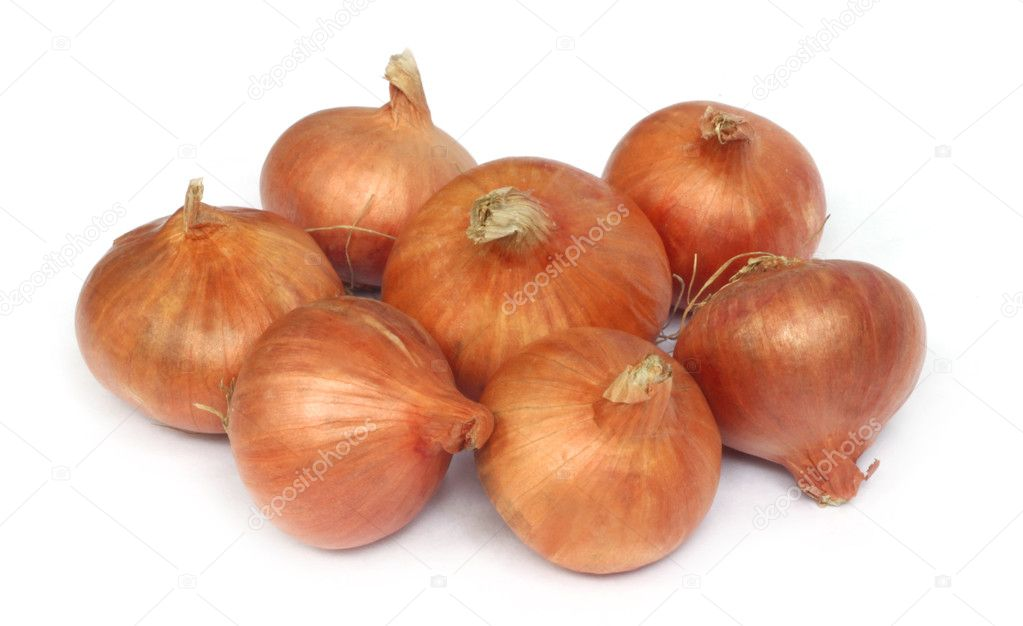 Onions over white background  Stock Photo #3964747