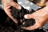 黒い土 — ストック写真