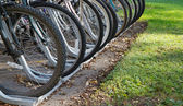 Row of bicycle tires — Stock Photo